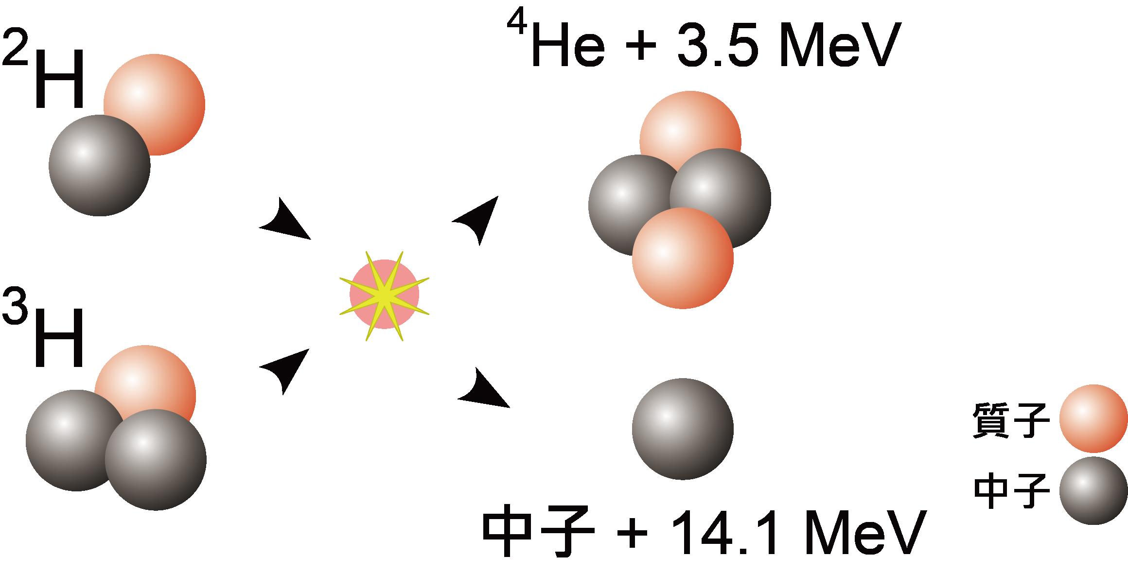 核融合反應